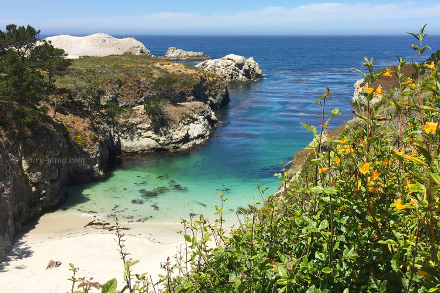 China Cove, Point Lobos State Natural Reserve, California, 6/2016