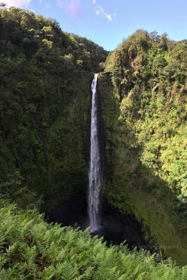 Akaka Falls, Big Island, Hawaii, 1/2015