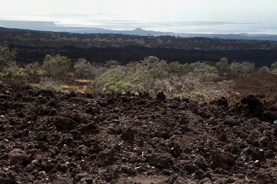 Volcano Landscape, Big Island, Hawaii, 1/2015