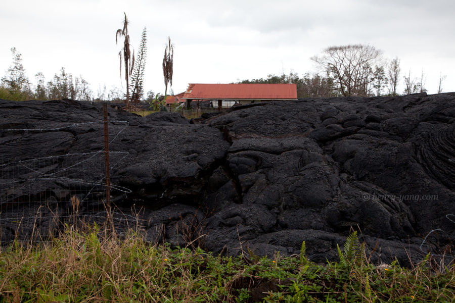 June 27th Lava Flow Frontier, Big Island, Hawaii, 1/2015