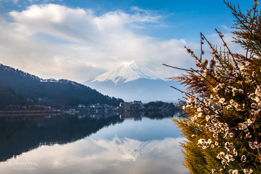 Mount Fuji, Lake Kawaguchiko, Japan