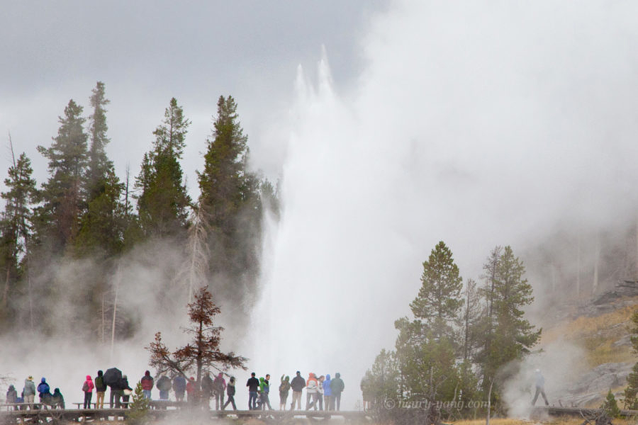 Grand Geyser, Yellowstone National Park, Wyoming, 9/2012