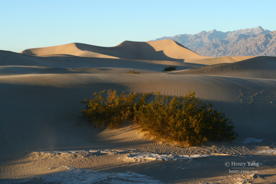 Mesquite Flat Sand Dunes, Death Valley National Park, California, 12/2008